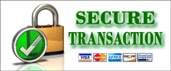 Secure Payment Processing by Paypal